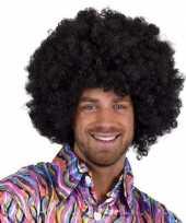Carnaval afro pruik 10180634