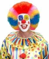 Clownspruiken rainbow